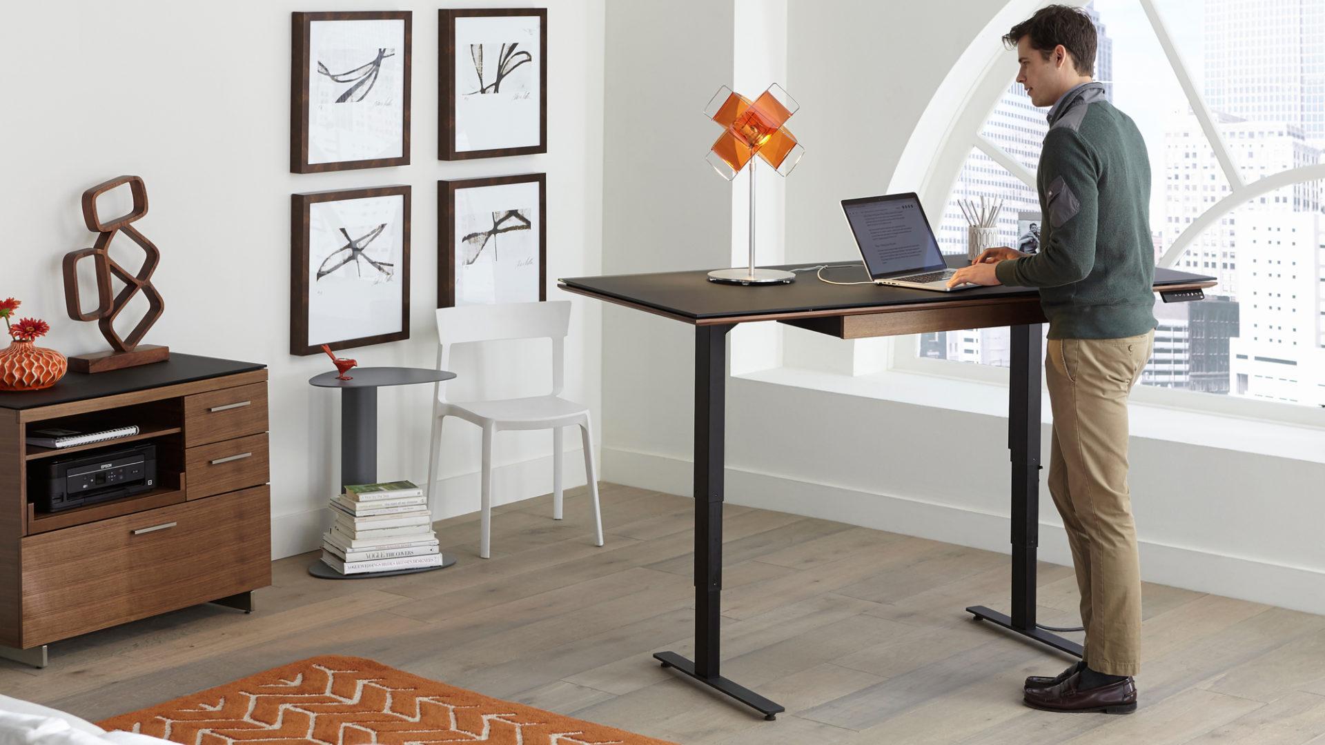 Lift Standing Desks, Stand Up Desks, and Sit+Stand Desks  BDI