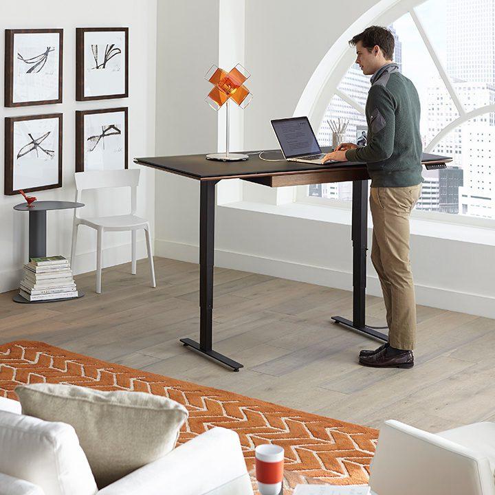 Standing Desks Executive Stand Up Desk: Lift Standing Desks, Stand Up Desks, And Sit+Stand Desks